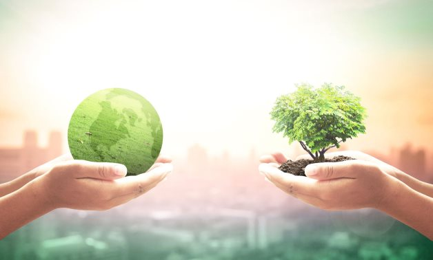 Overview of Egypt's green projects within Vision 2030