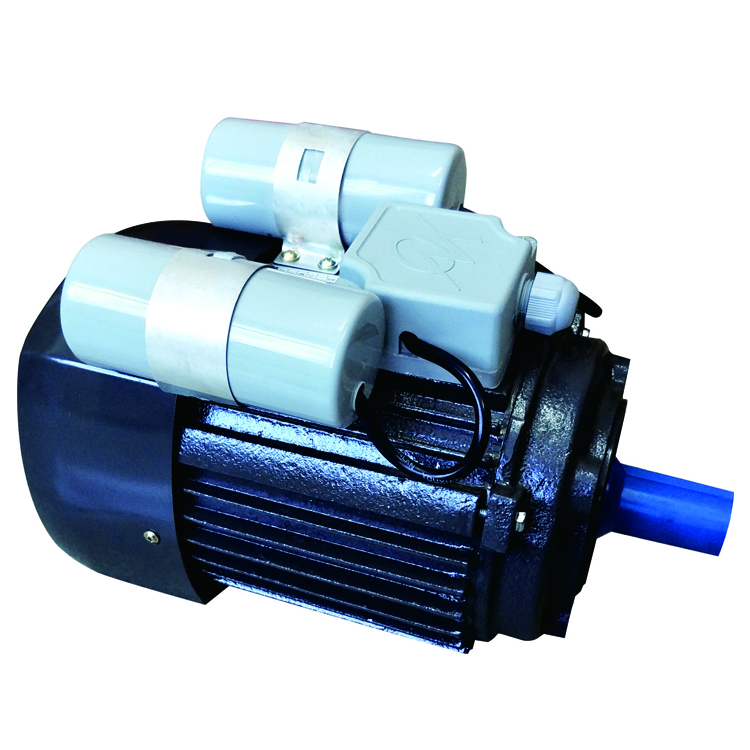 Double capacitor motor buying leads