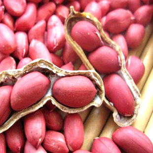 Chinese Red Skin Peanut Kernel