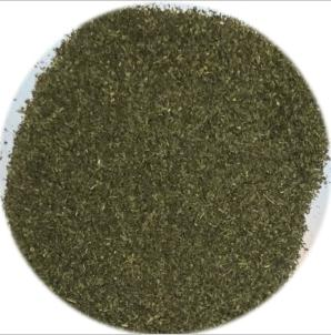 Conventional Green Tea Fanning (Green Teabag Cut)