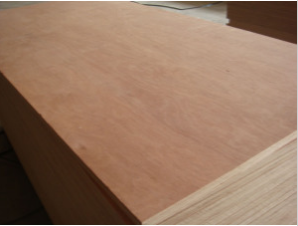 Professional Top Quality Commercial Plywood Used for Furnitu with Ce Certificate