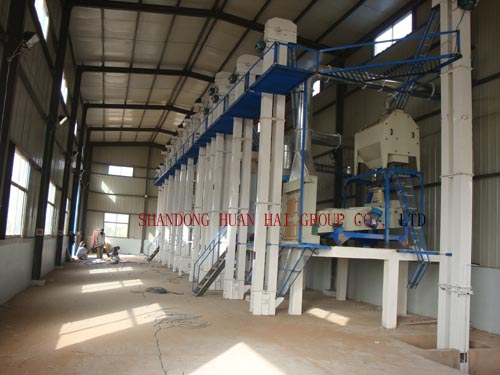 100TPD 200TPD Complete rice mill