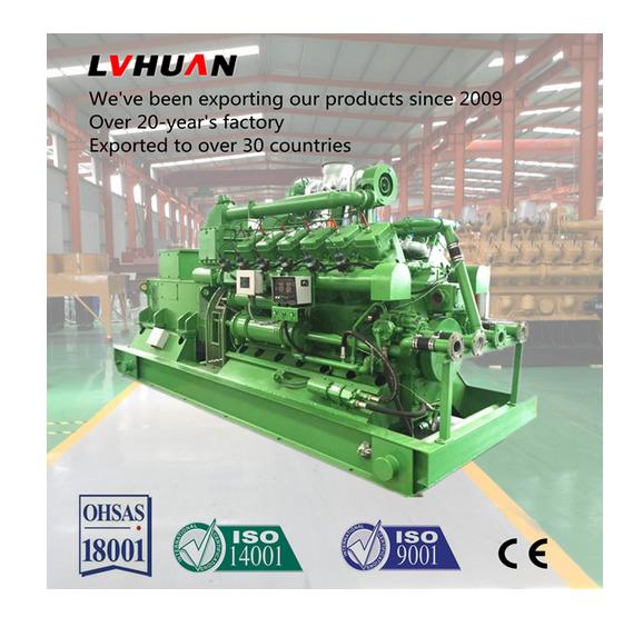 Turnkey Project Biomass Power Plant Gas Power Electric Generator