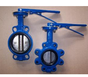 Wafer and Flange Butterfly Valve