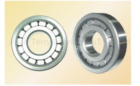 Double Row Cylindrical Roller Bearings (3040)