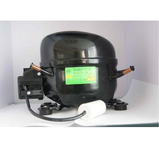 R600A Lbp Compressor (WS60YT) - 2