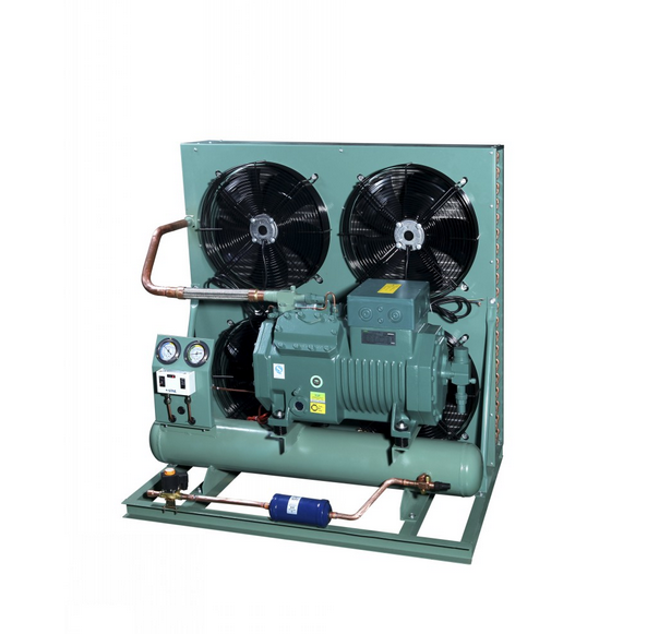 Air Cooled Condensing Unit for Cold Storage