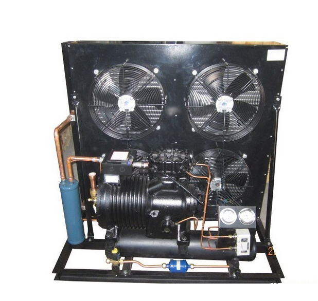Copeland Air Cooled Condensing Unit for Cold Storage