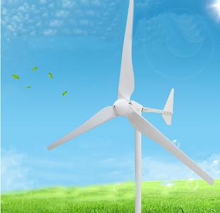 1kw Horizontal Axis Permanent Magnet Wind Turbine Generator