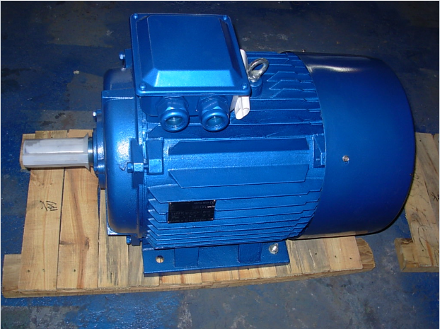 Y2 Series Three Phase AC Motor