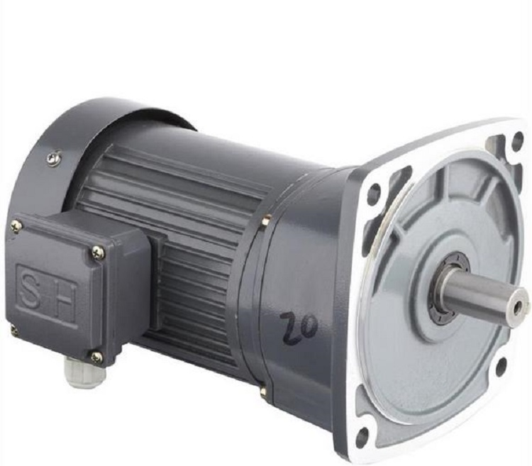Stable Geared Motor for Food & Beverages Industry
