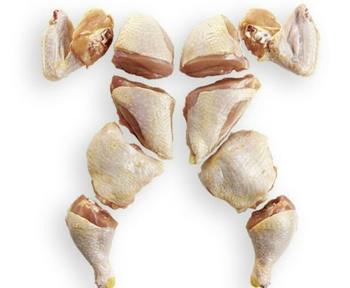 Frozen Halal Chicken Meat