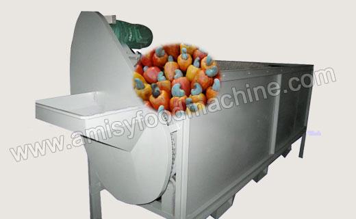 Cashew Grading Machine