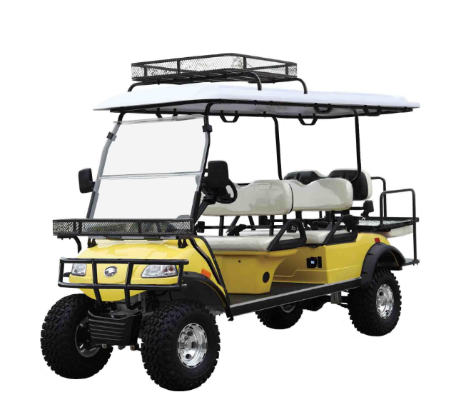 Electric Hunting Car Smart Buggy (DEL2042DL2Z, 4-Seater)
