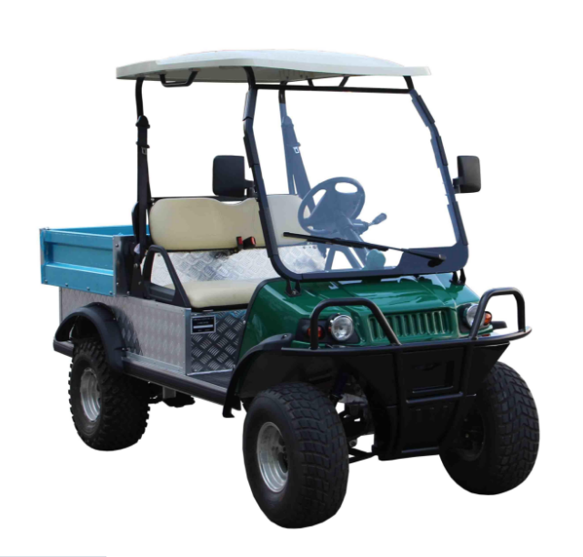 Electric Utility Cart (DEL2023DUBS, 2-Seater)