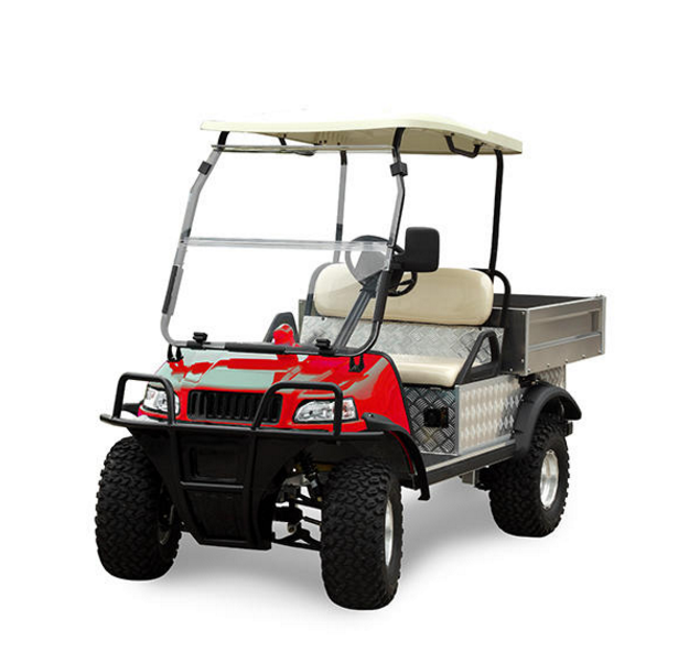 Electric Utility Cart (DEL2023DUBS, 2-Seater) - buying leads
