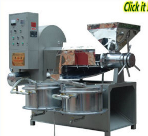 Automatic Jatropha Screw Oil Press (ZL-120)
