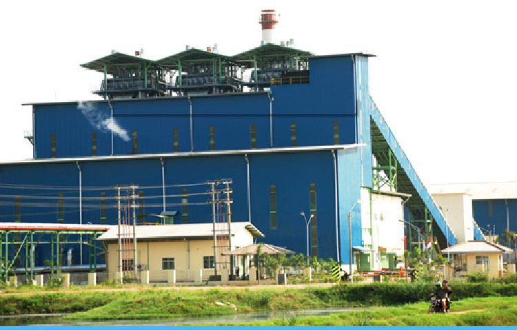 Cogeneration Plant Equipment Supplier
