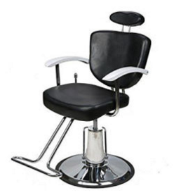 Salon Furniture Hairdressing Barber Styling Chair Hair Cut Chair