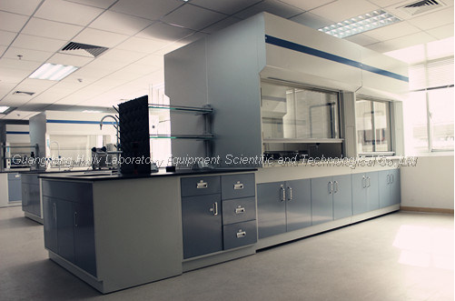 Factory Sale Lab Table Top Fume Hood