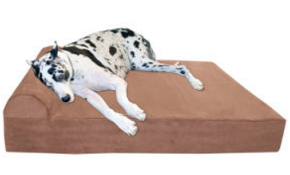 Orthopedic Memory Foam Dog Mat