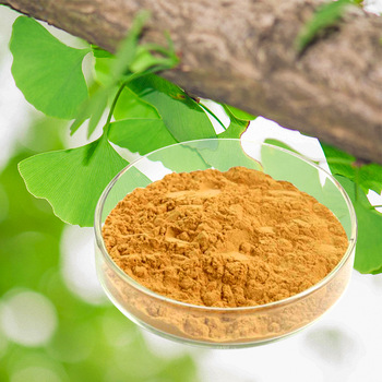 herbal medicine health food supplements gingko biloba powder herbs medicinal plant extract- buying leads