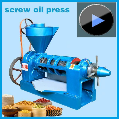 Yzyx10 High Oil Yield Oil Press Machine for Edible Oil