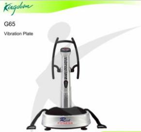 Fitness Equipment Vibration Machine Gym Equipment Vibration Plate