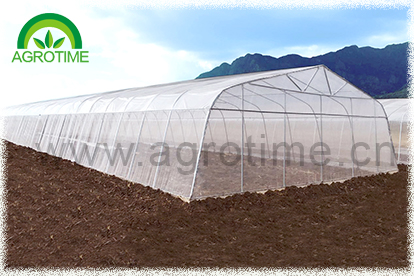 single tunnel film greenhouse(CMS3810)