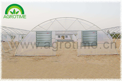 Arch greenhouse (CMR3810)