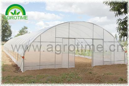 Tomato garden greenhouse(CMC3810)