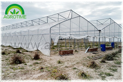 Greenhouse for vegetable(CMB4020)