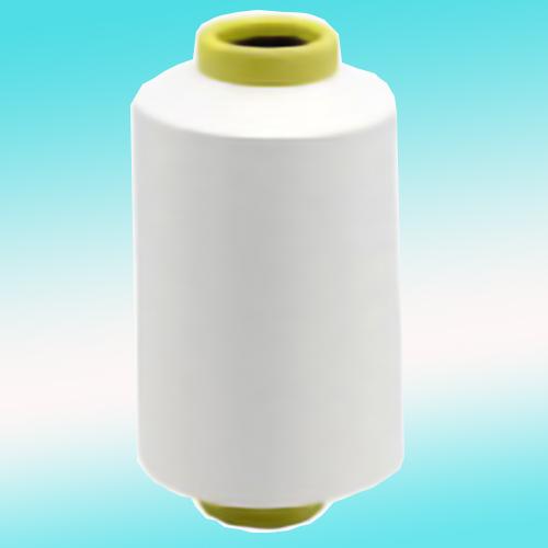 Nylon 6 Recycle  · DTY
